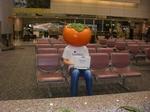 台湾空港 柿Kun[1]...JPG